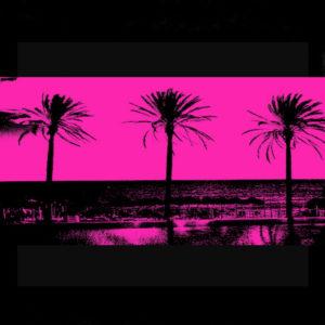 Pink Palms III